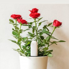 Xiaomi Flower monitor, flora monitor, датчик для растений